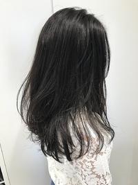【EuphoriaHARAJUKU】ダークグレーでオシャレな暗髪♪担当宍戸