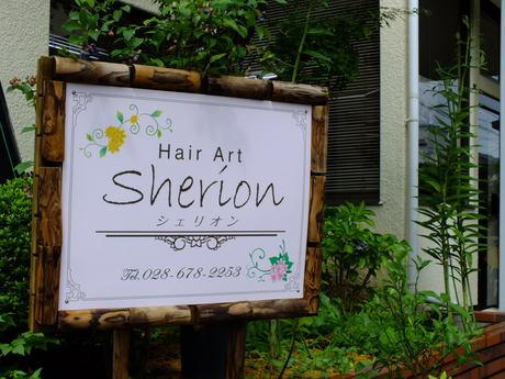 Hair Art Sherion