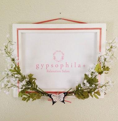 gypsophila+
