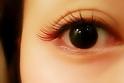 VOORDEUR -Eyelash-