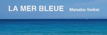 La mer bleue  | ラメールブルー  のロゴ