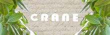 CRANE 南青山店  | クレイン ミナミアオヤマテン  のロゴ