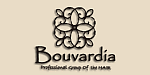 Bouvardia ブバルディア