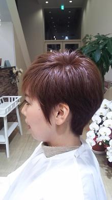 MIRROR HAIR DESIGN    ミラーヘアデザイン  のイメージ