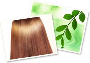 髪に優しい良草カラー