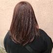ヴィンテージカラー×ラベンダーブラウン ALPHA SALIDAのヘアスタイル