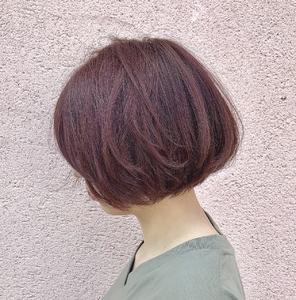 ボブ×チェリーレッド|ALPHA SALIDAのヘアスタイル