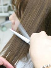 カットデザインはヘアスタイルの基本