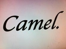 Camel.  | キャメル  のロゴ