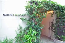 quadrille citronnier  | カドリエシトロニエ  のイメージ