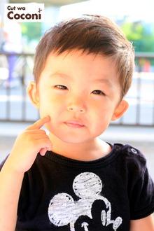 かわいいお子様カット!めっちゃかわいい男の子〜!!!|Cut wa Coconi (交野市美容室・美容院)のヘアスタイル