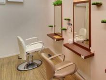 Beauty Freesia  | ビューティーフレーシア  のイメージ