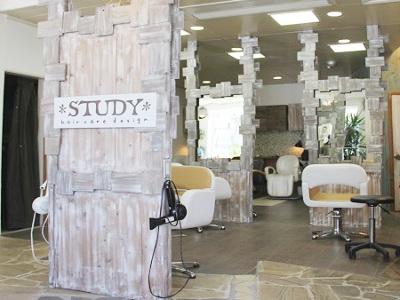 *STUDY*hair care design