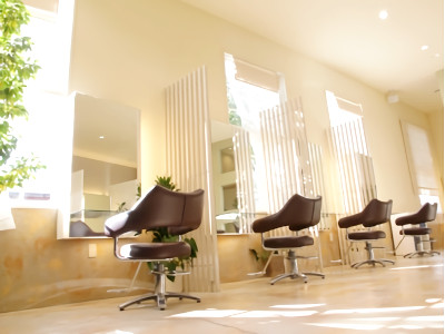 Hair Studio Clamps