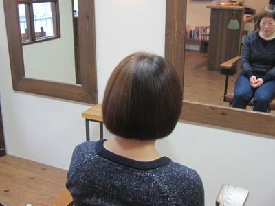 ハーフハーフマッシュボブ♪|eternity hairのヘアスタイル