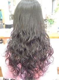 伸ばし続けた髪の毛・・・