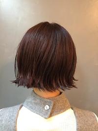 ぱっつんボブの暖色カラースタイル