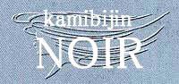 髪美人NOIR  | カミビジン ノワール  のロゴ
