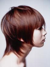 ドライカットショート|SHAPE GARDEN horikiriのヘアスタイル