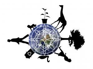 ENGAROのオーガニックパーマへのこだわり『C-SYSTEM』