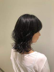 マッシュウルフ ミディアム|MASHU NU茶屋町店のヘアスタイル
