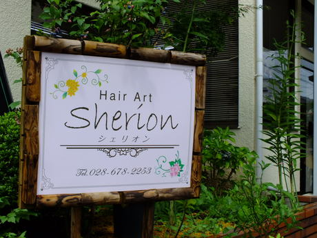 Hair Art Sherion