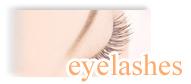 Eyelashes(まつ毛エクステ・まつ毛パーマ)