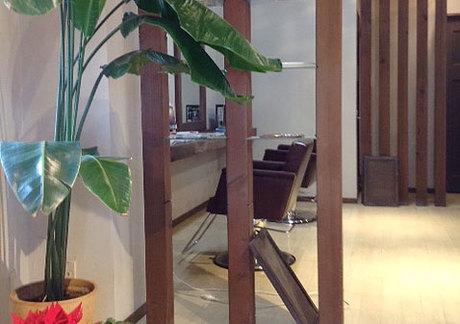 hair salon SOLA