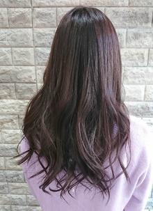 パープル・バイオレット艶カラー|Hip's deco 大宮店のヘアスタイル