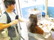 hair salon Hivira