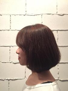 ナチュラルボブ|ARISEのヘアスタイル