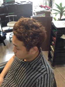 メンズパーマ|hair Seeleのヘアスタイル