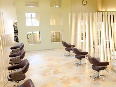 Hair Studio Clamps -Esthe-