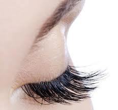 Plumeria By Lily's Nail -Eyelash-