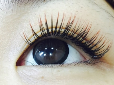 Salon cleve -Eyelash-