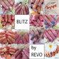 BLITZ REVOLUT -Nail-