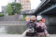 梨花和服 祇園店  | リカワフク ギオンテン 【着物・浴衣レンタル/ヘアセット】 のイメージ