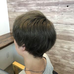 マッシュ メンズ オリーブベージュ|healing salon Casaのヘアスタイル