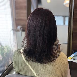ピンクパープル レイヤー healing salon Casaのヘアスタイル