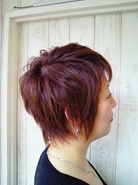 くせ毛をいかしたタイトで動きのあるショートヘア