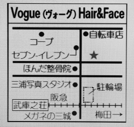 Vogue Hair&Face